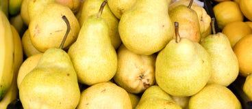成熟水多的梨背景您的设计的 库存照片