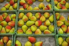 成熟水多的梨背景  免版税库存照片