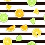 成熟水多的热带水果镶边无缝的背景 传染媒介卡片例证 新鲜的柑橘石灰橙色柠檬果子 图库摄影