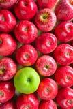 成熟水多的苹果 图库摄影
