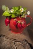 成熟水多的莓果和水罐在片断 免版税库存图片