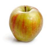 成熟 甜 在白色背景的水多的苹果 免版税库存照片