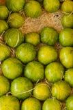 成熟绿色果子 库存图片