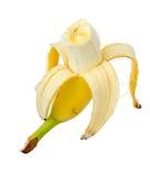 成熟黄色香蕉。 免版税库存图片