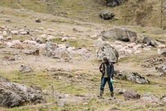 成群在乔治亚山的牧羊人绵羊  姆茨赫塔Mtianet 免版税库存图片