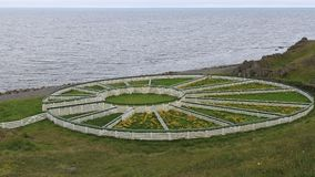 成群篱芭冰岛的绵羊 免版税库存照片