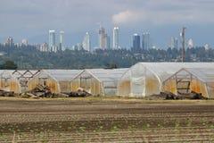 成长中的城市和农场土地 免版税库存照片