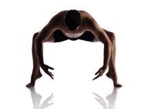 成年男性舞蹈家 免版税库存照片