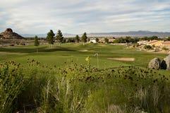 我们打高尔夫球 图库摄影