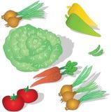 我们的表蔬菜 库存图片