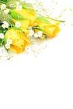 黄色玫瑰和阴霾草 免版税库存照片