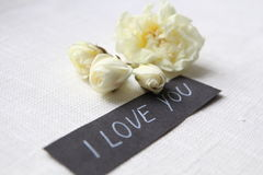 我爱你 空白的玫瑰 免版税库存图片