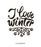 我爱冬天 现代刷子书法,隔绝在白色背景 图库摄影
