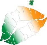 我爱尔兰人亲吻m我 库存照片