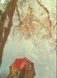 我爱我五颜六色的伞 库存图片