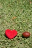 我爱橄榄球 库存照片