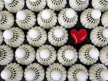 我爱的羽毛球 免版税库存照片