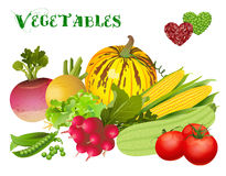 我爱蔬菜 免版税库存照片