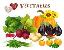 我爱蔬菜 免版税库存图片