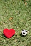 我爱足球 免版税库存照片
