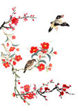 我的书刊上的图片--李子开花和鸟 免版税库存图片