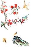 我的书刊上的图片--李子开花和鸟 图库摄影