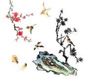 我的书刊上的图片--李子开花和鸟 库存图片