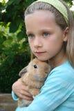 我的兔子 库存照片