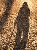 我的影子 库存图片