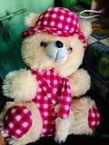 我的我的女朋友的甜逗人喜爱的玩具熊美丽的pic  库存图片