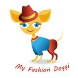 我的时尚小狗 免版税库存照片