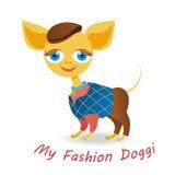 我的时尚小狗 免版税库存图片