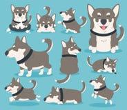 我的狗eps 10 免版税库存图片