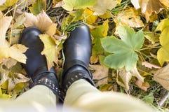 我的秋天意图 秋天时尚摘要 免版税库存图片