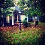 我的秋天的后院 免版税库存照片