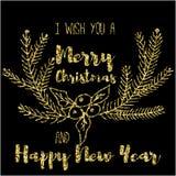 我祝愿您圣诞快乐和新年快乐 免版税图库摄影