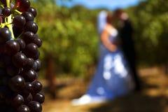 我葡萄园婚礼 库存图片