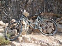 我要骑我生锈的自行车的自行车自行车! 免版税库存照片