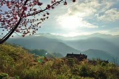 我们在风景的秀丽喝了 美好的风景相当获取了地方名誉 免版税库存照片