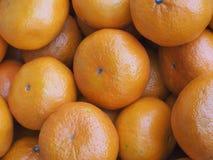 我们好健康的桔子 免版税图库摄影