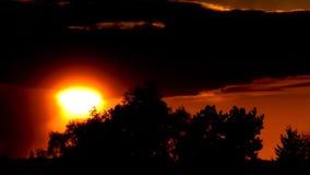 我们的太阳在柏林和勃兰登堡,德国 股票视频