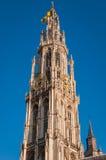 我们的夫人大教堂塔在安特卫普 免版税库存图片