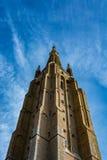 我们的夫人教会的塔在布鲁日在一美好的天,比利时 免版税库存图片