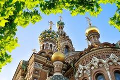 我们的Spilled血液的救主,圣彼德堡大教堂特写镜头  图库摄影