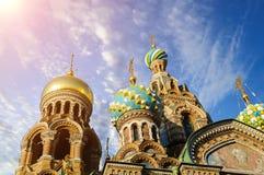我们的Spilled血液的救主,圣彼德堡大教堂特写镜头  免版税库存图片