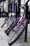 我们骑自行车 免版税库存照片