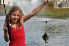 我3条第一条的鱼 免版税库存图片
