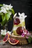戒毒所分层了堆积matcha绿茶chia种子布丁用血橙 素食主义者点心用椰子鞭打了奶油 免版税图库摄影