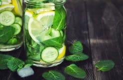 戒毒所水用柠檬、黄瓜和薄菏 免版税图库摄影