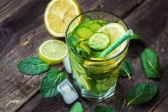 戒毒所水用柠檬、黄瓜和薄菏 图库摄影